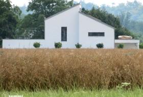 Neubau: Einfamilienhaus in Massivbauweise Ytong 3c
